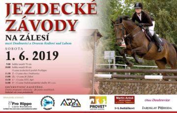1. 6. 2019 – závody koní na Zálesí s klienty DsJ