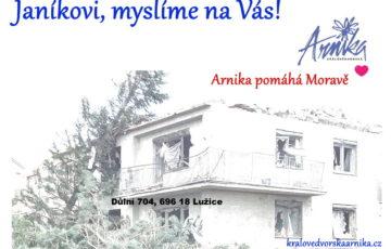 Arnika pomáhá Moravě